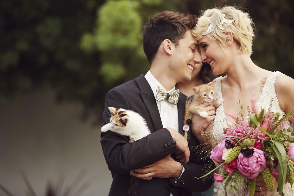 matrimonio con il gatto